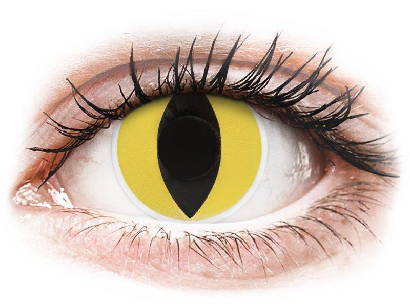 cat eye linser